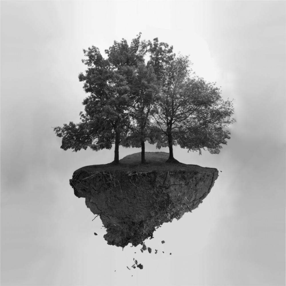 3 arbres volant dans le ciel